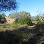 RASQUERA. FOREST FINCA WITH 3 BUILDINGS - 58 000€   Ref: 054A/18