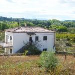 FALSET. HAZELNUT FINCA CLOSE TO TOWN - 198 000€  Ref: 055A/18