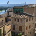 MORA D'EBRE. LARGE HOUSE NEAR RIVER - 150 000€ Ref: 100A/21