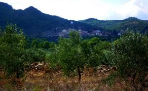 rasquera view